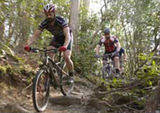Mountain Biking in Transylvania County
